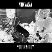 The album Bleach by Nirvana